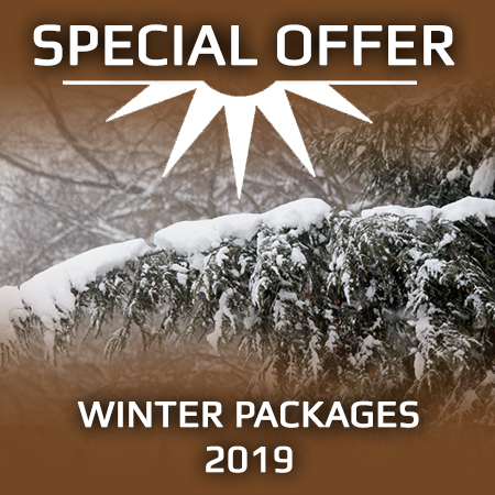 Winter packages 2019